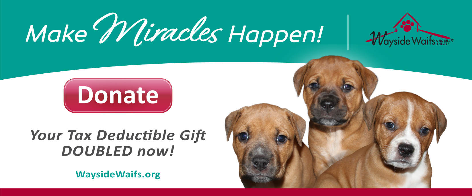 Donate now and your gift will be MATCHED!