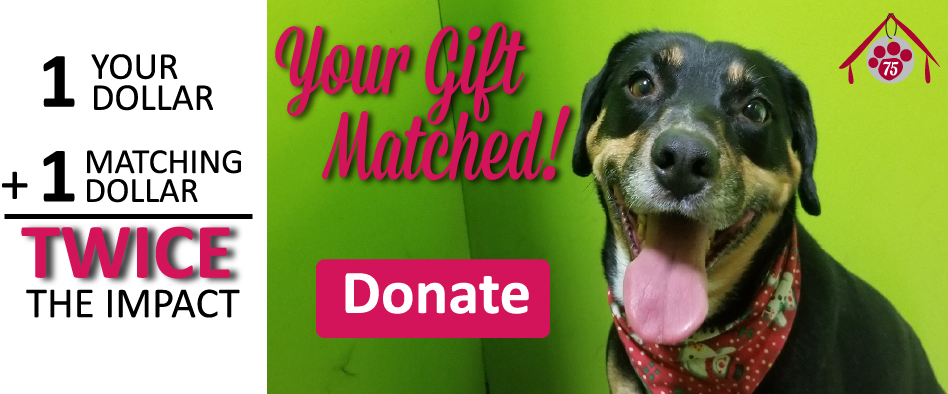 Your gift of $50 matched to be $100!